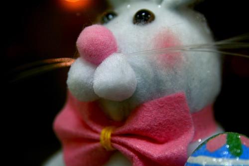 Easter Bunny 4-13-09 IMG_2441