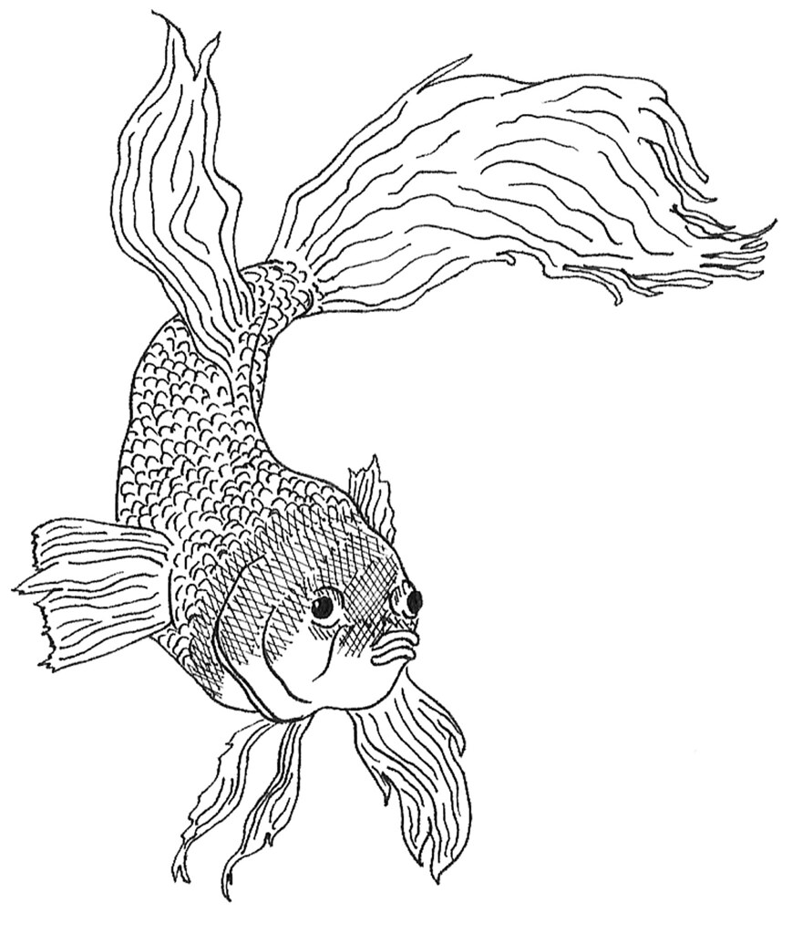 Dead Fish Coloring Page Coloring Pages
