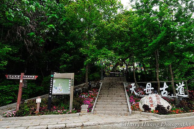 3_D303548-Trail, Path, Taipei City, Taiwan 天母水管路步道-臺階樓梯-階梯-天母古道-郊遊-景觀-臺北市 | Flickr - Photo Sharing!