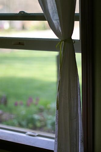 Open Window Season