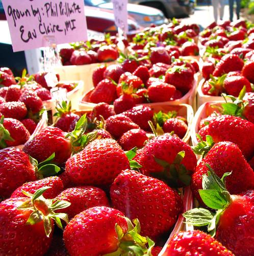 farmersmrktMQT_starwberrysmichigan_0471square