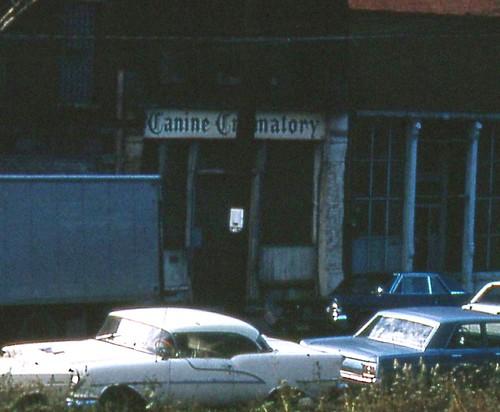 Canine Crematory