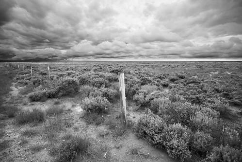 Wyoming Prairie - Section E
