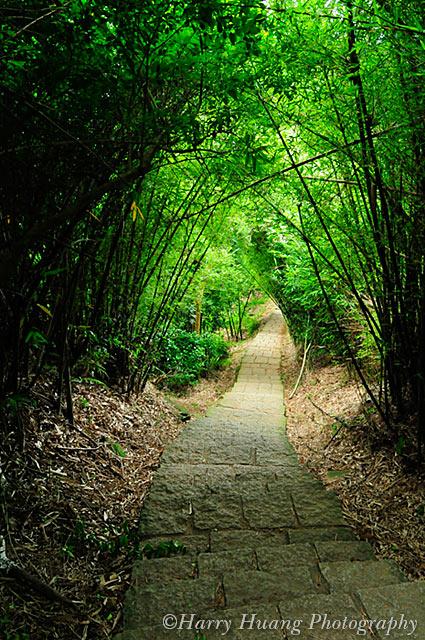 3_D308365-Trail, Path, Taipei City, Taiwan 竹林小徑-天母水管路步道-天母古道-郊遊-景觀-臺北市 | Flickr - Photo Sharing!