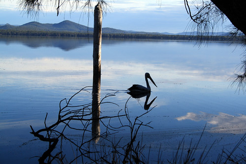 Myall Lakes photo