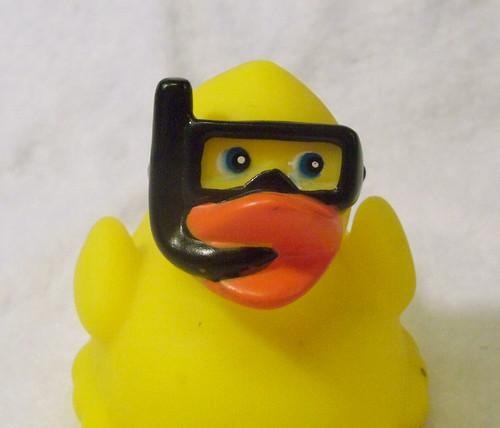 snorkel ducky says hello.jpg