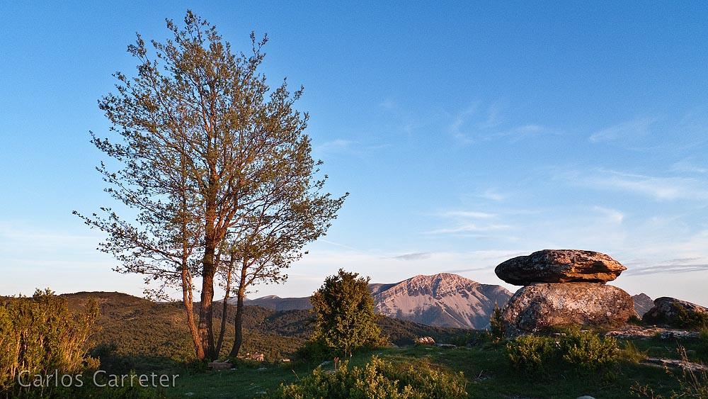 Dolmen, árbol y Tozal de Guara