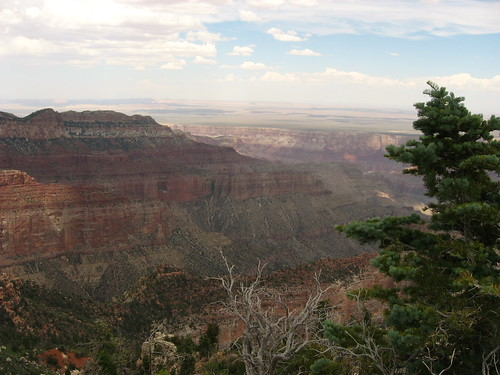 Point Imperial, North Rim, Grand Canyon National Park (12)