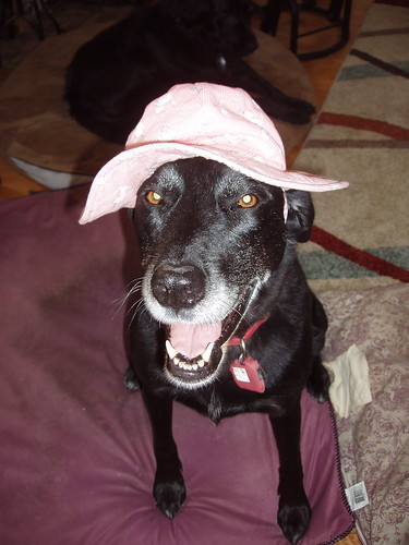 Nuala tries AG's hat