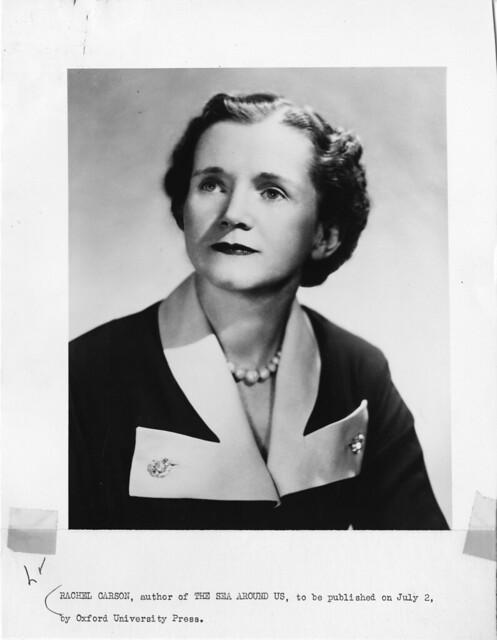 Rachel Louise Carson (1907-1964)