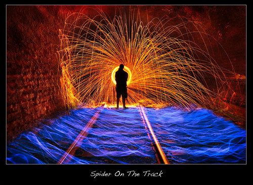 Spider On The Track