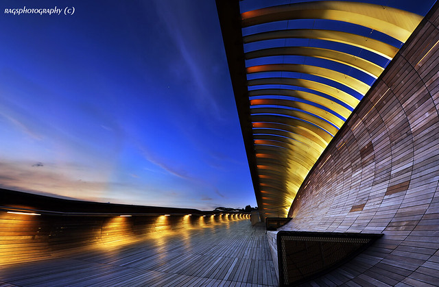 Our New Landmark - Singapore Henderson Waves Bridge por Ragstatic