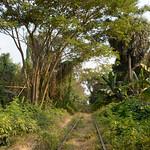14 Battambang 03