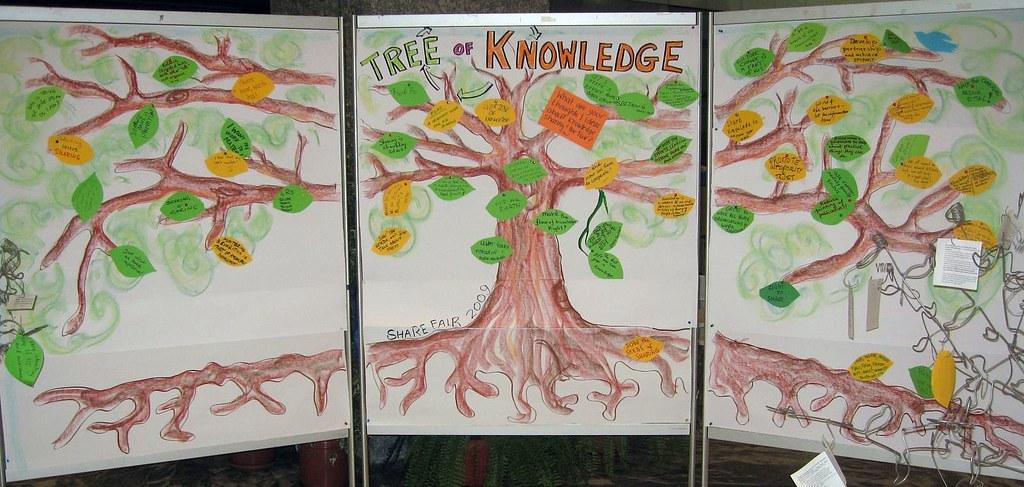 The Share Fair Knowledge Tree