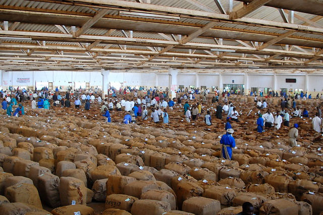 Tobacco Auction Floor  Flickr  Photo Sharing