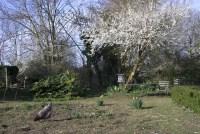 Beautiful backyard scene      Flickr - Photo Sharing!
