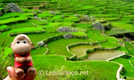 Banga-an Rice Terraces