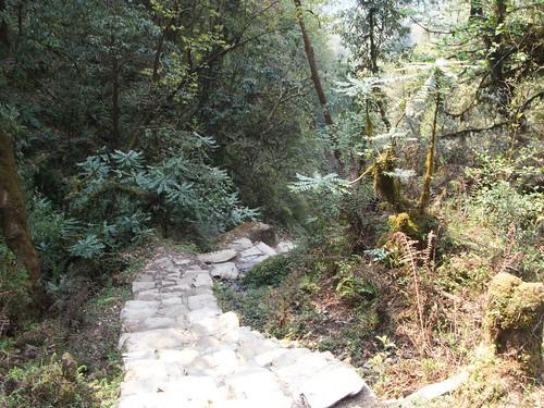 nepal 163