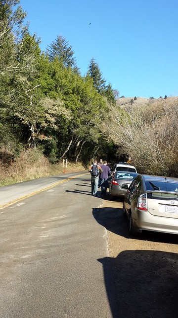 parking at muir woods