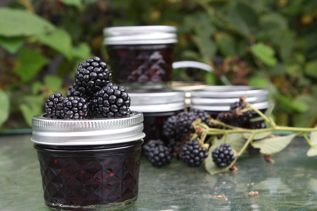 Blackberry Lemon Jam