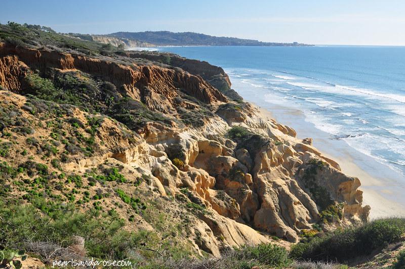 torrey_pines_cliffs_web