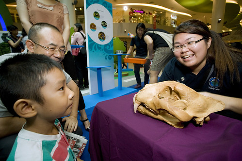 055-festival-of-biodiversity-2013-vivocity-13-july-day1[Marcus Ng]