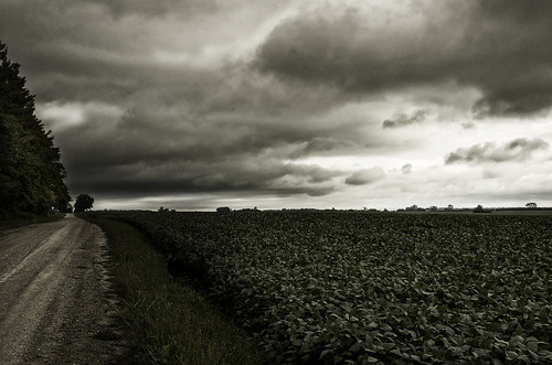 And Miles to Go . . . . by jumpinjimmyjava