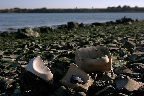 Tepco beach