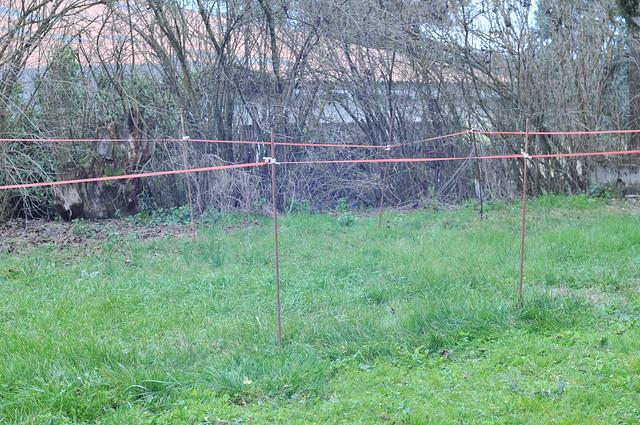Otto's Fence