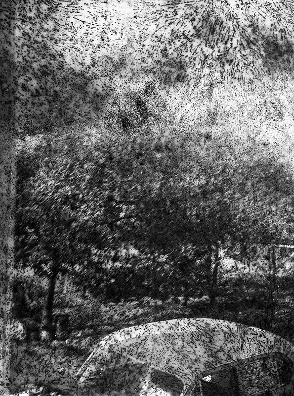 Found Film: Tri-X Pan with Fungus
