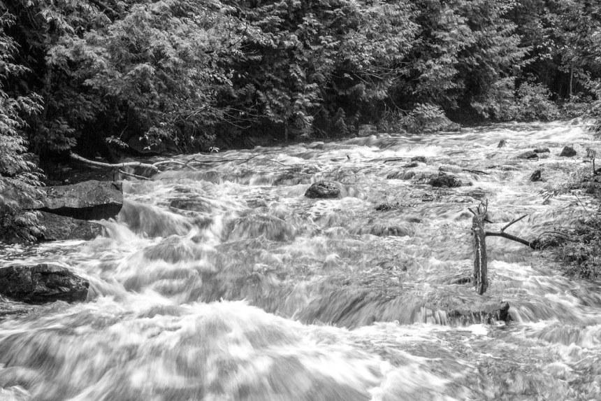 West Credit River in full flow by Paul Henman