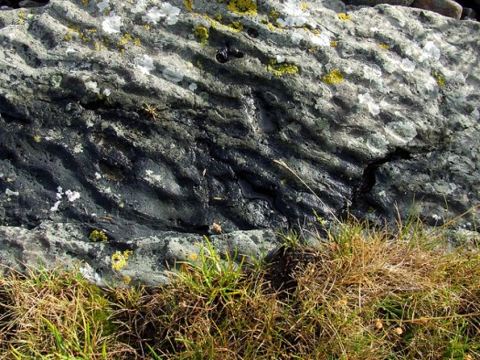 rippled seaside rock
