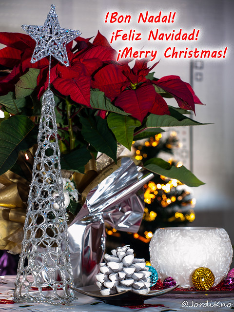 Bon Nadal – Feliz Navidad – Merry Christmas