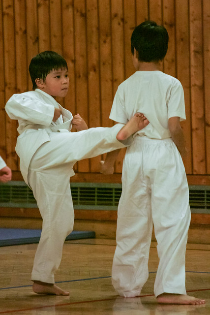 karate sparring kids