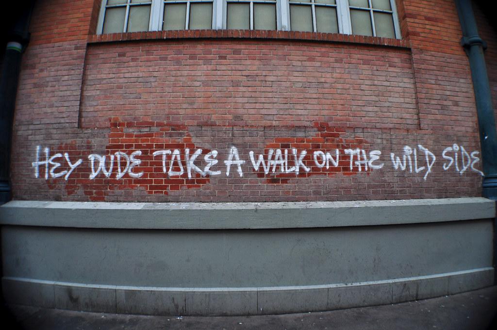 Hey Dude Take A Walk On The Wild Side