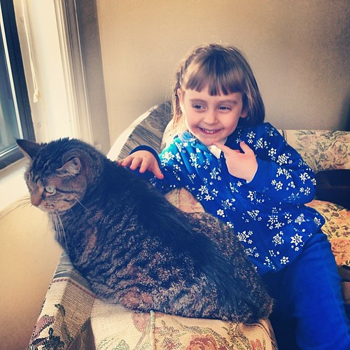 You gotta pet her so she can feel it #catsofinstagram #niecesofinstagram