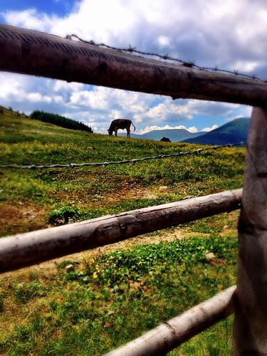 Hiking in Styria by SpatzMe