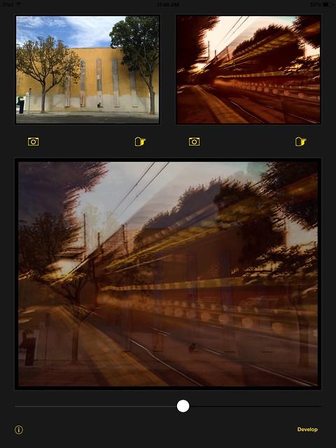 Camera Roll-2689