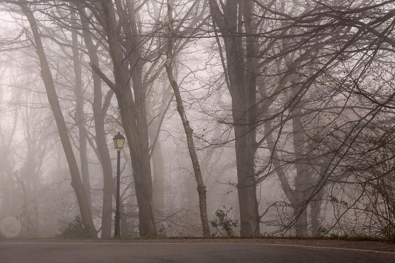 Nieblas matinales (2/4)