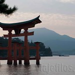 Hiroshima-Miyahima-26