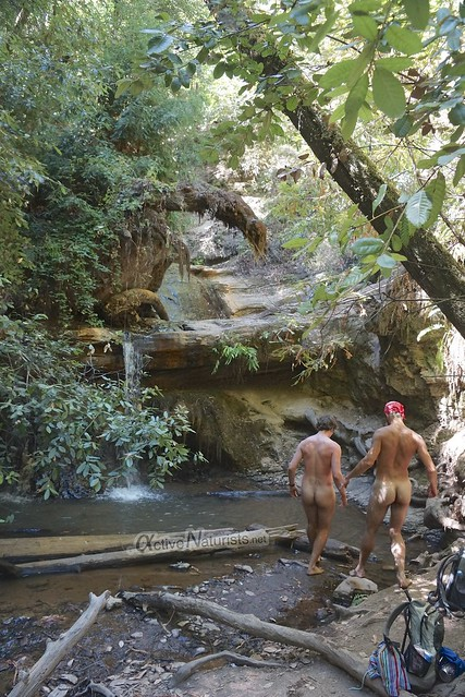 naturist 0011 Big Basin Redwoods, CA, USA