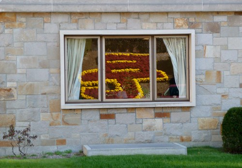 BC flowers reflected in McGuinn Hall window