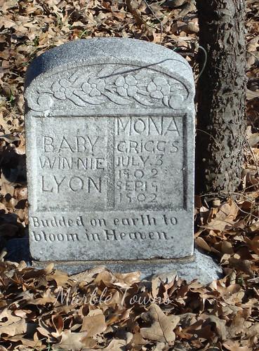 2 babies-Arlington Cemetery.JPG