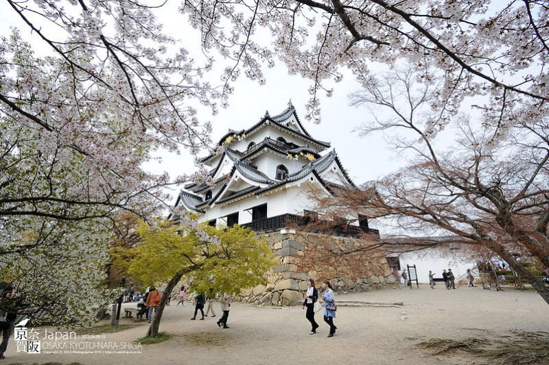 Japan-1874