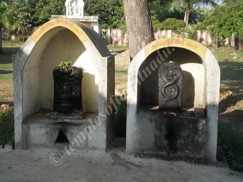 Nagar under the Sthala Vruksham