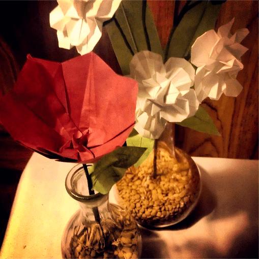 Tulip & Stock