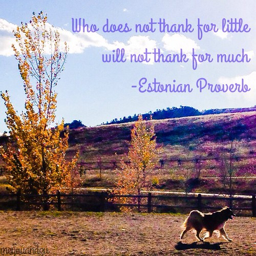Be thankful for the little