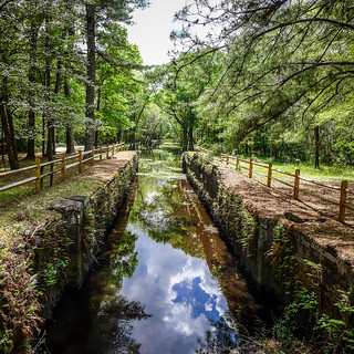 Ogeechee River with LCU-012