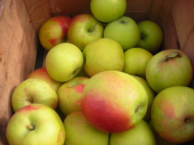 Baldwin apples