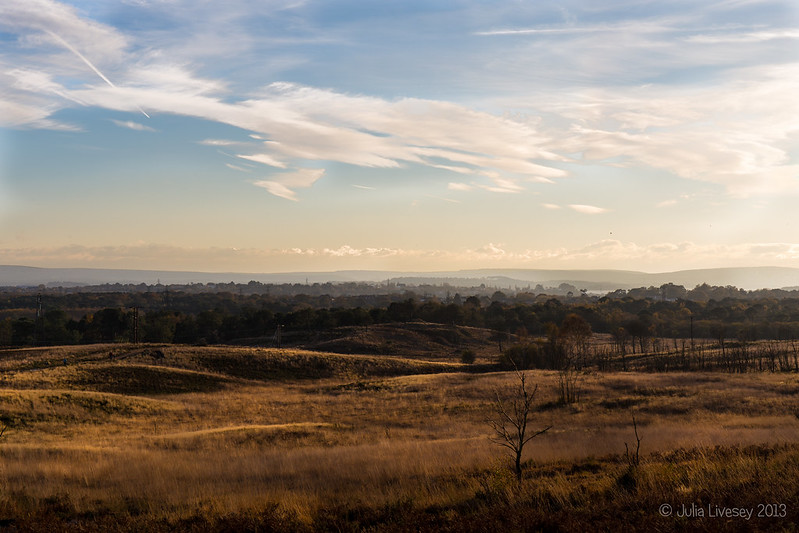 Lumps and Bumps in the Landscape, Upton Heath